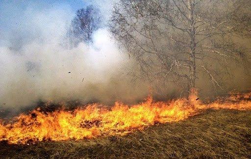 Informacja dot. bezpieczeństwa pożarowego przekazana przez Nadleśnictwo Lipusz ….